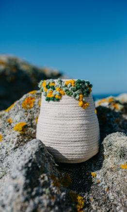 jarrón rocha